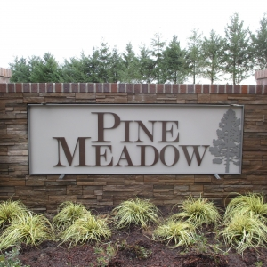 Pine Meadow - 2